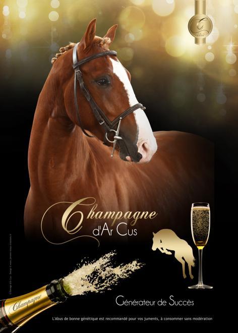 Champagne darcus 2016 affa4 recto web